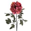 Flor peonía de color rosa de 97 cm